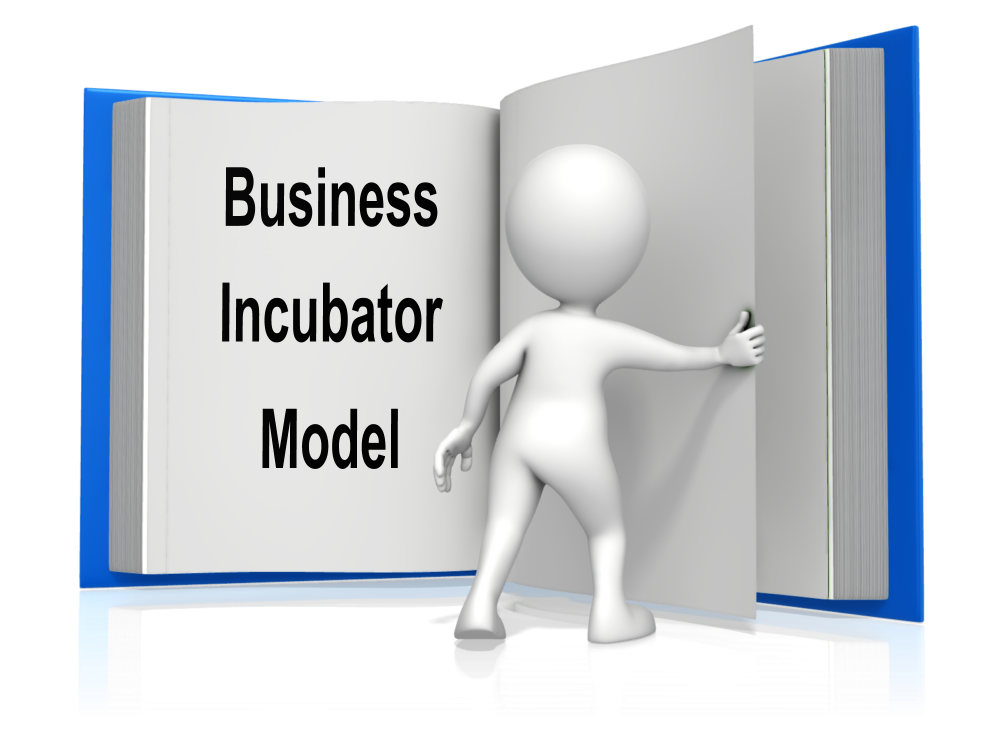 Enterprise and Supplier Development business incubator sustainability
