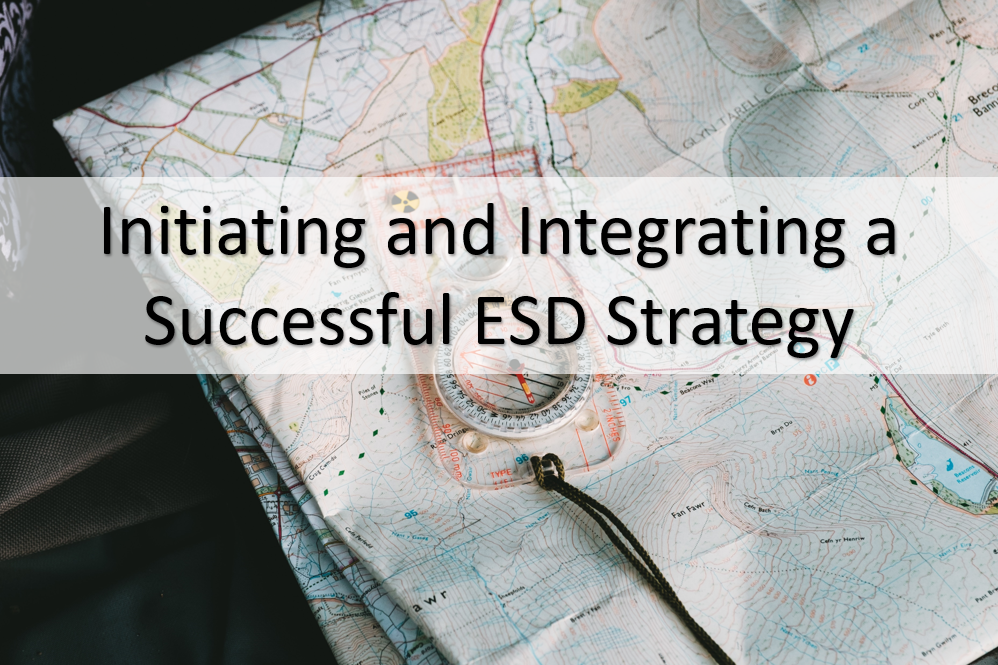 ESD Strategy Initiation
