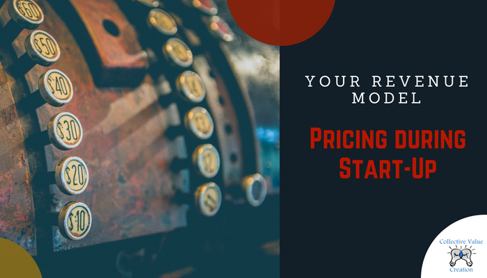 Making a pricing decision